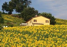 datisonshuis_la-manche-italie_home